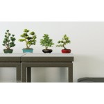 Bonsai Trees Wall Art Stickers